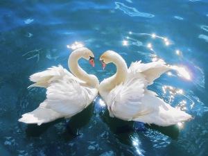 spiritual love