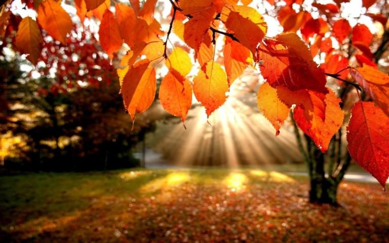 Autumn Equinox by theawakenedstate.net